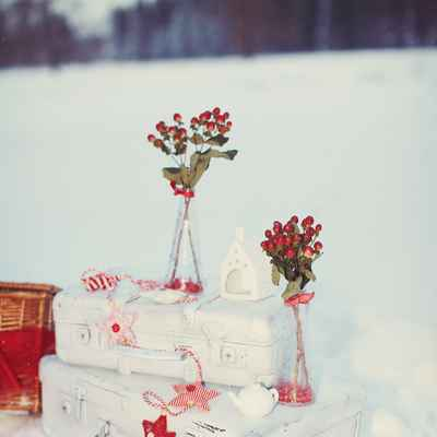 Winter red photo session decor
