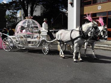Wedding transport decor