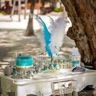 Beach white wedding photo session decor