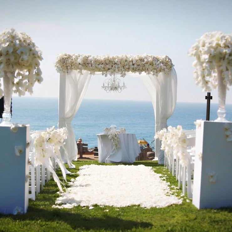 Pauly Wedding