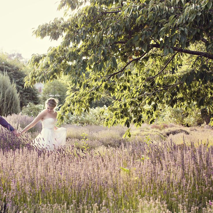 Mistral and Aaron at Lavendula Farm Daylesford