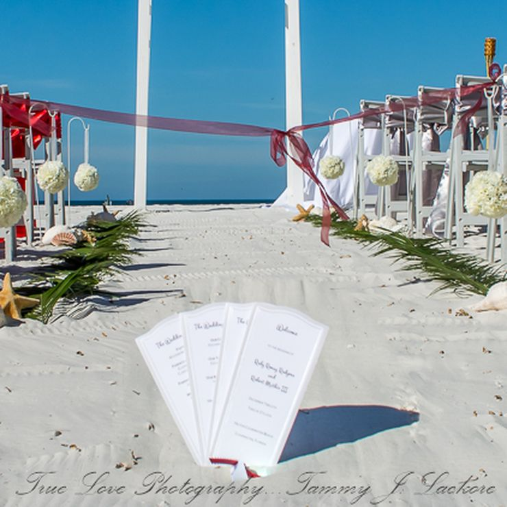 True Love Photography by Tammy J Lackore  Florida Wedding and Lifestyle Photographer